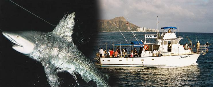 Oahu shark fishing charters for Fishing charters oahu